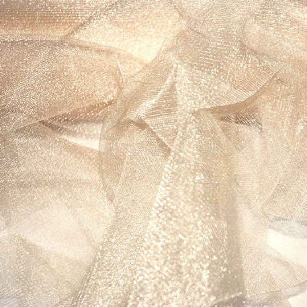 Sparkling Tulle Nightlife champagne